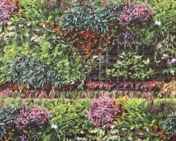 טפט לקיר צמחייה צבעונית