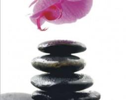 תמונת טפט אבנים חלוקי נחל