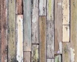 תמונת טפט עץ דק צבעוני