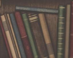 טפט לקיר ספרייה עם ספרים