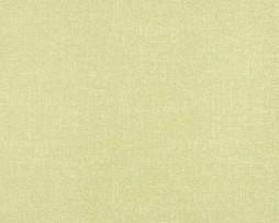 טפט לקיר דמוי ווש ירוק בהיר