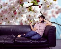 תמונת טפט פרחי אביב