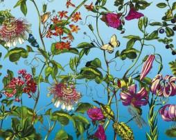 תמונת טפט גן פרחים צבעוניים