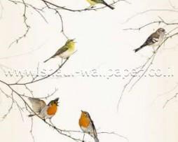 תמונת טפט לדלת ציפורים