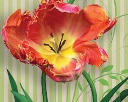 תמונת טפט לדלת פרחים