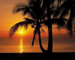 תמונת טפט שקיעה בחוף