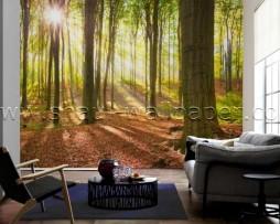 תמונת טפט תלת מימד יער בקיץ