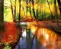 תמונת טפט תלת מימד נהר ביער