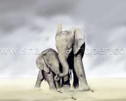 תמונת טפט תלת מימד משפחת פילים