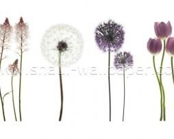 תמונת טפט תלת מימד פרחים סגולים