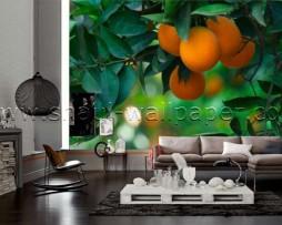 תמונת טפט תלת מימד עצי תפוזים