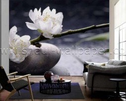 תמונת טפט תלת מימד פרחים לבנים על אבנים