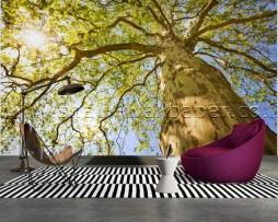 תמונת טפט תלת מימד עץ ירוק