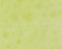 טפט לקיר ווש ירוק