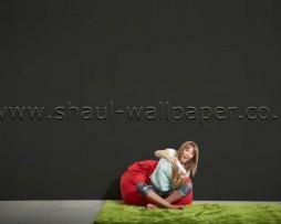 טפט לקיר שחור חלק