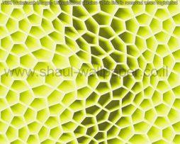 טפטים לקיר, טפט תלת מימד מהמם בצבע ירוק לבן לחדרי ילדים ונוער