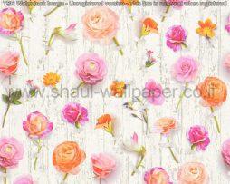 טפטים לסלון פינות אוכל ולחלל הבית טפט שלל פרחים בגווני ורוד כתום אפרסק