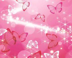 תמונת טפט פרפרים